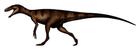 Herrerasaurus ischigualastensis
