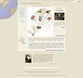 Tree of Life Web Project.PNG