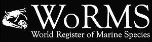 WoRMS (World Register of Marine Species) - logo - 01.jpg