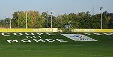 """A green field with the words """"Coupe du monde""""."""