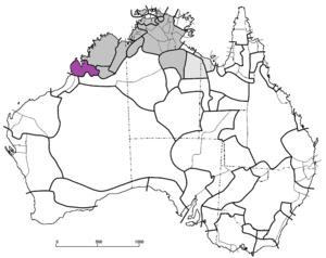 Nyulnyulan languages.png