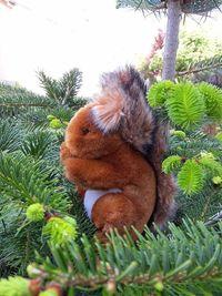 Vends une peluche écureuil