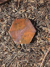 Tomettes anciennes carrées et hexagonales