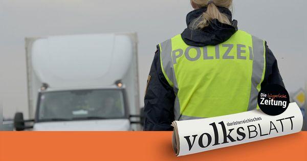 Illegaler Transport mit sieben Welpen an oö. Grenze gestoppt