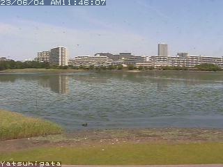 http://webview.seaple.ne.jp/cgi-bin/SnapshotJPEG?Resolution=320x240&Quality=Motion