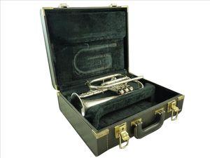 Maestro cornet