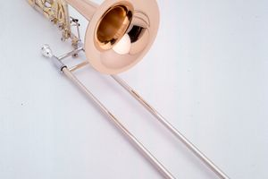 Bass trom