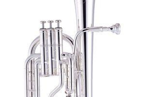 Packer horn