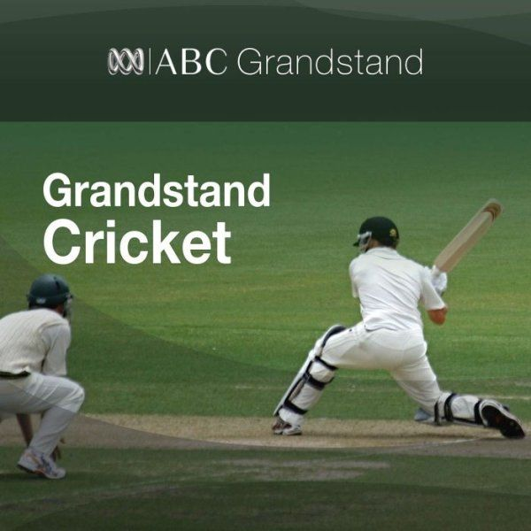 Grandstand at Stumps: Fifth Test, day two