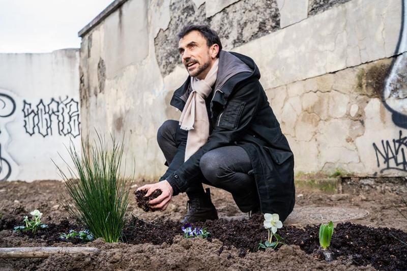 Verdi solo Italia sono bonsai offuscati dalle 5 Stelle Grillo