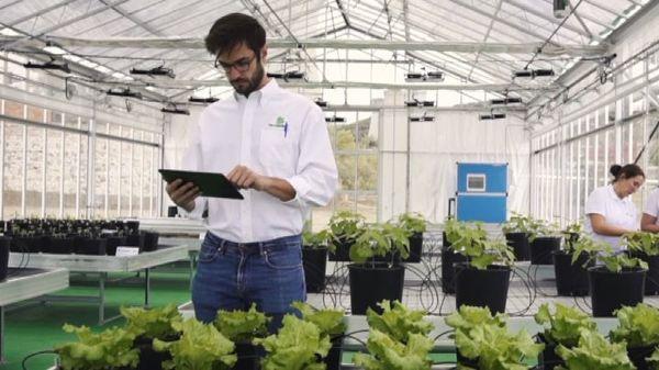 Agricoltura, innovazione e sostenibilità: i progetti FertiGlobal