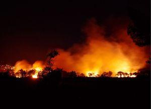 Il business incendi. La farsa: come l'ecocidio crea un'economia intoccabile