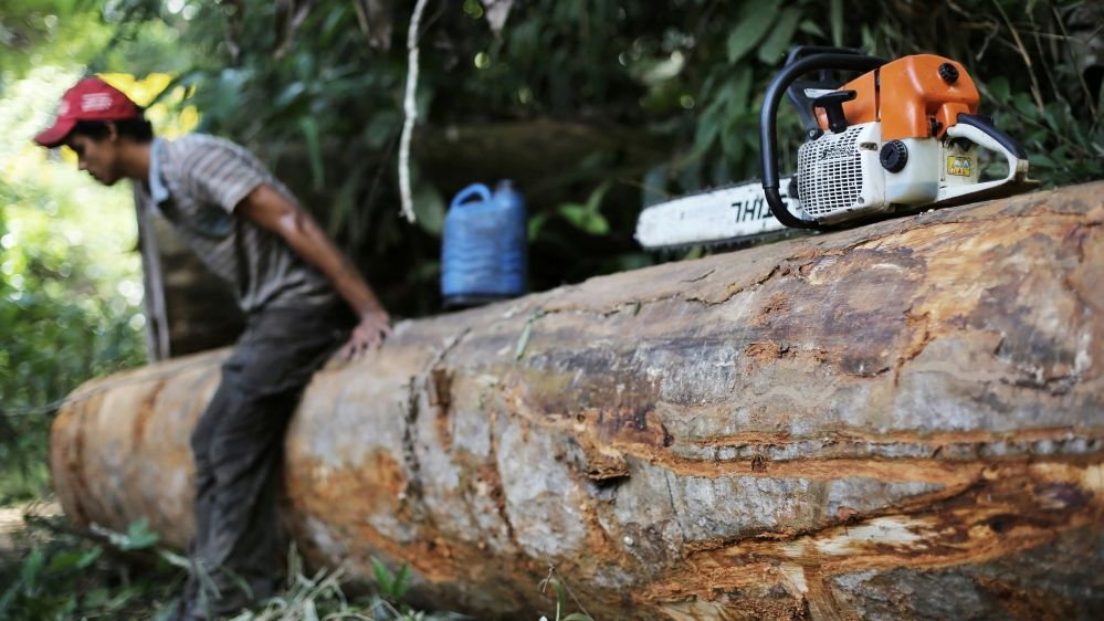 A man, who was hired by loggers to cut trees from the Amazon rainforest, sits on a tree next to his chainsaw in Jamanxim National Park, near the city of Novo Progresso, Para State, Brazil, 2013
