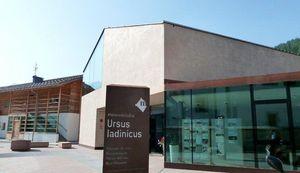 A San Cassianocompie un decennio di vitail museo dedicato all'orso ladino