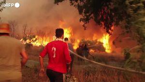 Algeria, soccorritori e abitanti insieme all'opera per domare i roghi - Mondo