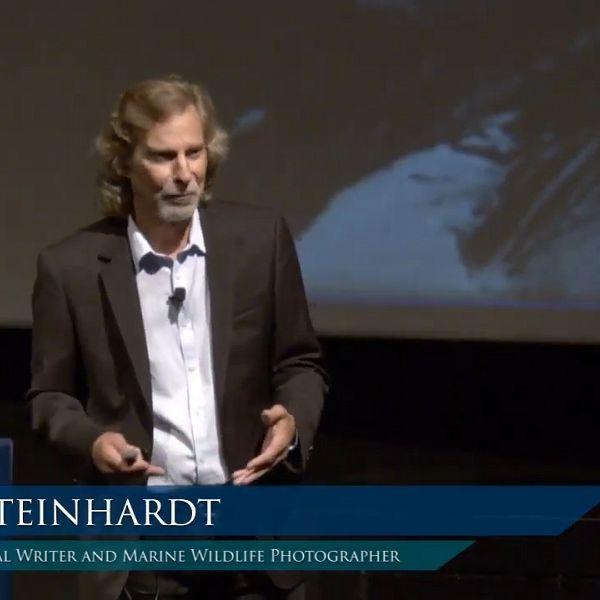 Lecture Archive: Kim Steinhardt