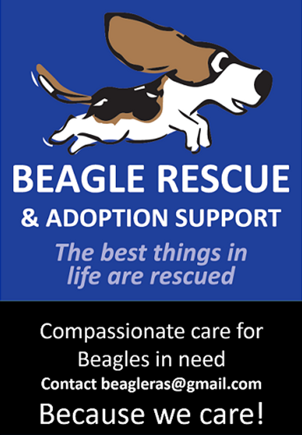 Beagle Rescue And Support Logo