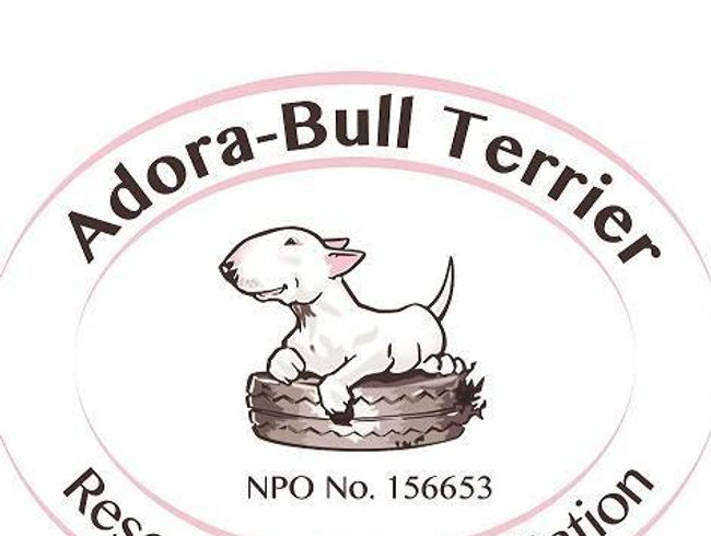 Adorabull Terrier Rescue and Rehabilitation