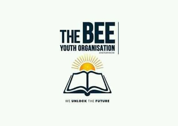 THE BEE YOUTH ORGANISATION Logo