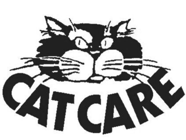 Cat Care Port Elizabeth