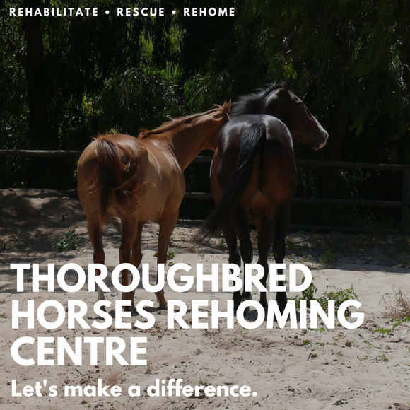 Thoroughbred Horses Rehoming Centre Logo