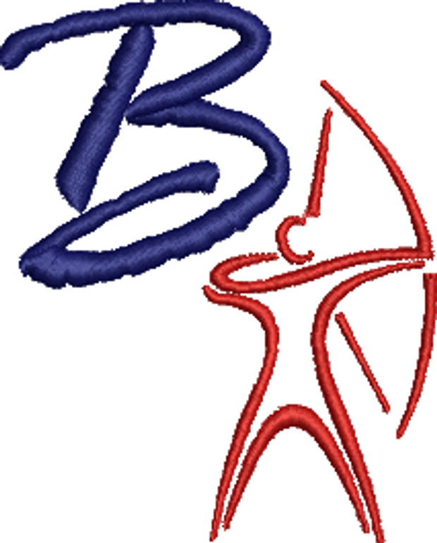 Bastion Primary School Archery Cause Logo