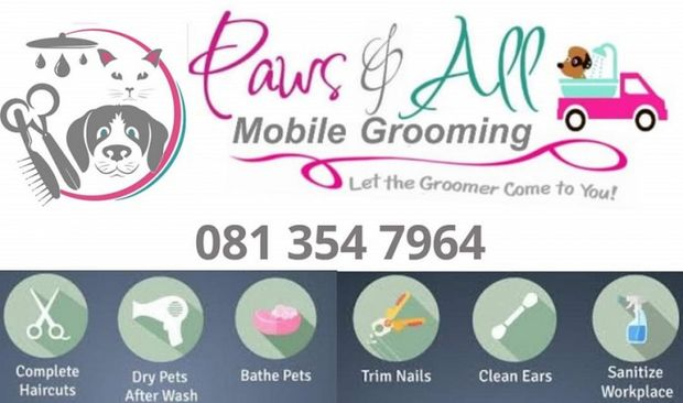 Paws and All Cause Logo