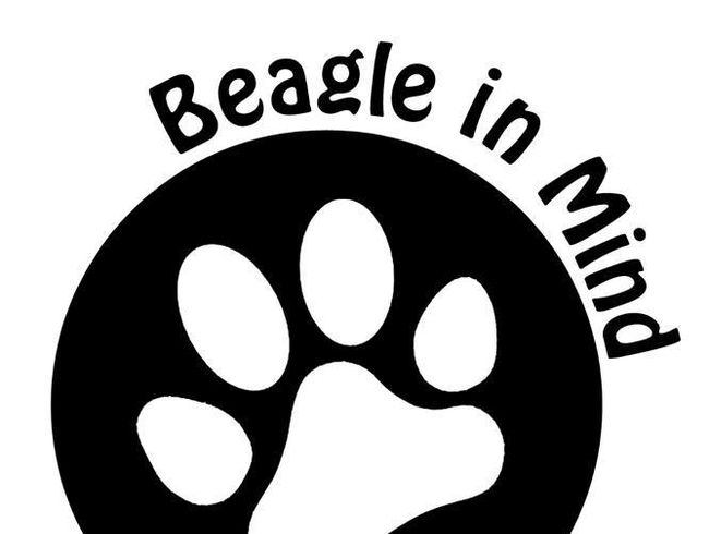 Beagle in Mind