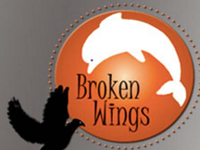 Broken Wings Association for Adults with  Disabilities