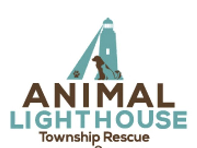 Animal Lighthouse