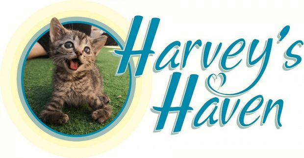 Harvey's Haven Cause Logo
