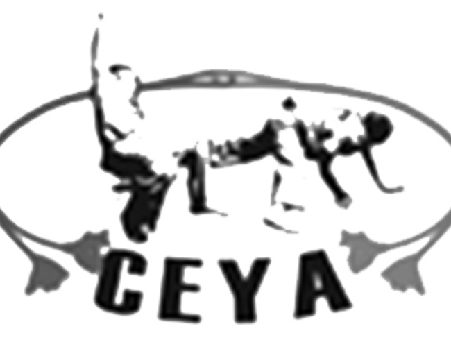 Capoeira Educational Youth Association