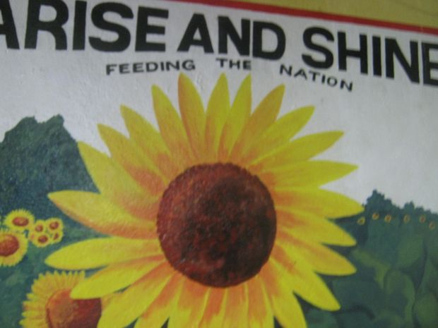 Arise and Shine Organisation Logo