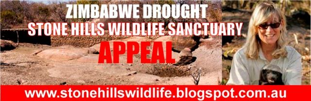 Stone Hills Drought Appeal Thumb Image