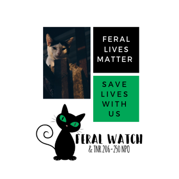 Feral Watch And TNR Logo