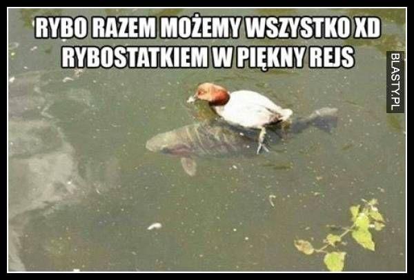 [Obrazek: rybo-razem-mozemy-wszystko-xd_2016-09-05_09-55-28.jpg]