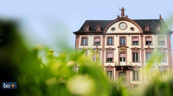 So will Offenburg bis 2050 klimaneutral werden