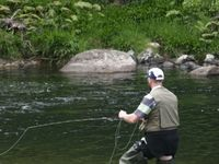 NZ Fly Fishing