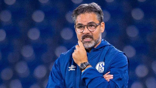 David Wagner spricht von fehlender Qualität auf Schalke - und räumt eigene Fehler ein