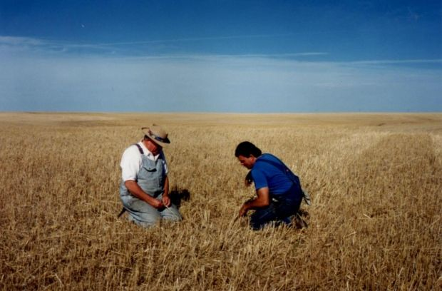 Farm incomes smashed records in 2015: Agriculture Canada