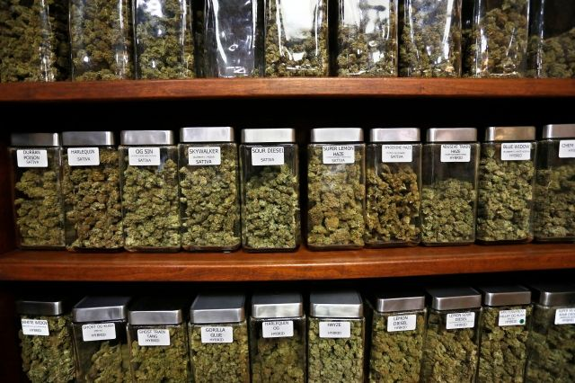 Workplace marijuana bans weigh into use decisions, Yale study finds