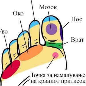Рефлексологија – ослободете се од болката со ...