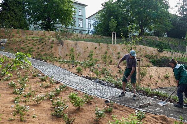 Erster Bauabschnitt im Zschopauer Seminargarten abgeschlossen | Freie Presse - Zschopau