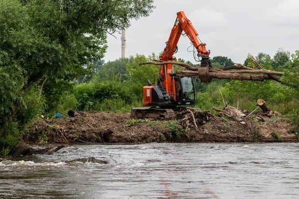 Biberburg an der Zwickauer Mulde zerstört - Anwohner empört   Freie Presse - Rochlitz