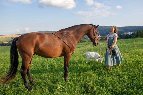 Mit Pferd und Ziege auf Sachsens höchsten Gipfel | Freie Presse - Annaberg