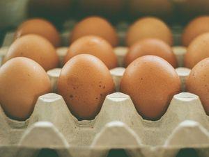 Allarme dalla filiera delle uova: domanda bassa e troppi rincari