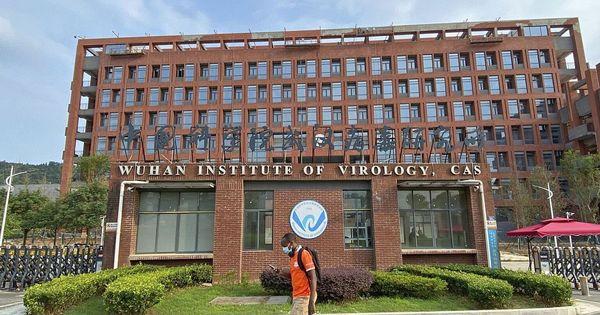 Coronavirus: China lehnt WHO-Pläne für Laborinspektionen ab | Politik