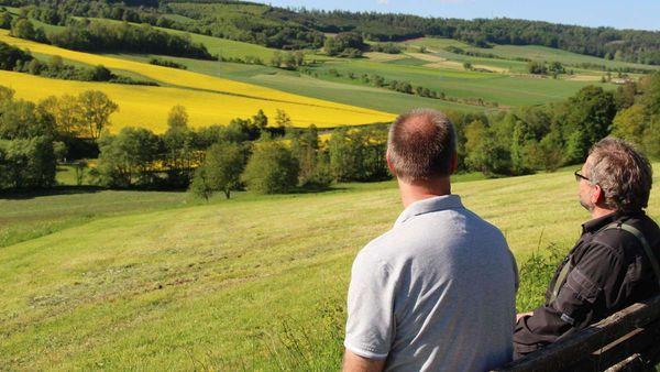 Ausbau der Landesstraße im Haselgrund in Rotenburg: Ortsvorsteher möchten Strecke im Tal