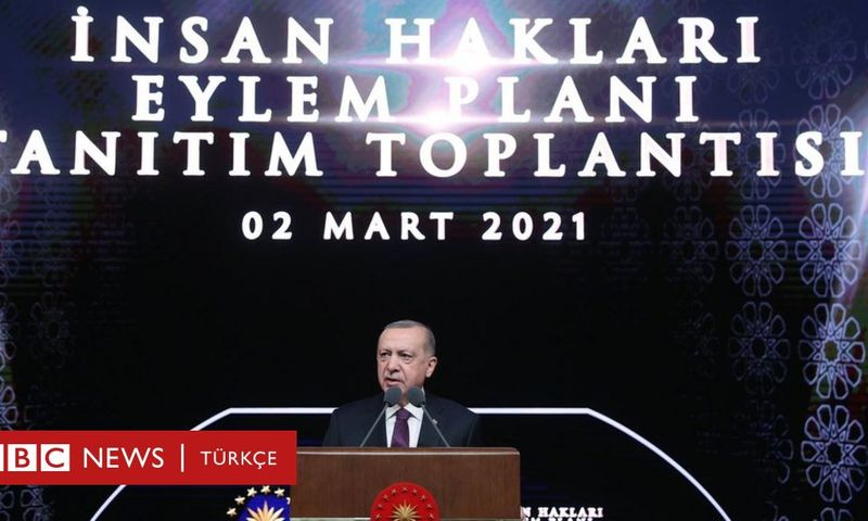 İnsan Hakları Eylem Planı: Erdoğan'ın açıkladığı plan kapsamında hangi yasal düzenlemeler yapılacak?