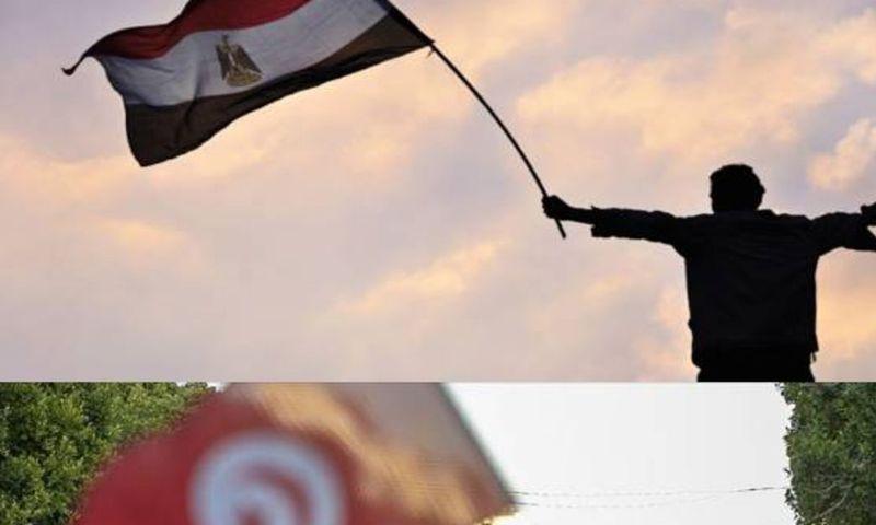 Mısır'dan Tunus'a tam destek